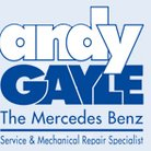 Andy Gayle